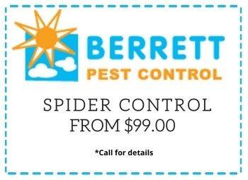 spider-control-from-99