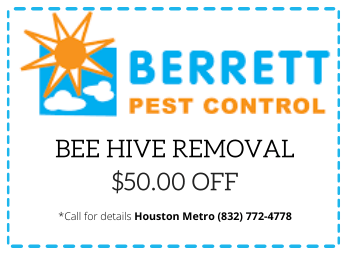 berrett-bee-hives-coupon-dallas-tx
