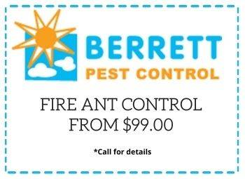 fire-ant-control-from-99