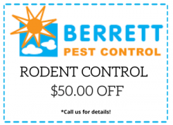 berrett-rodent-coupon-dallas-tx
